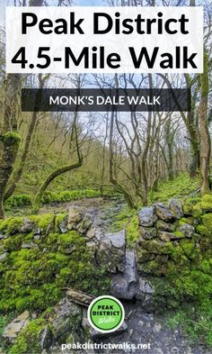 Looking for a beautiful walk in the Derbyshire Peak District, why not try Monk's Dale Walk From Miller Dale Yorkshire Dales, Yorkshire England, East Yorkshire, Country Walk, Walking Routes, Adventure Activities, Peak District, English Countryside, Derbyshire