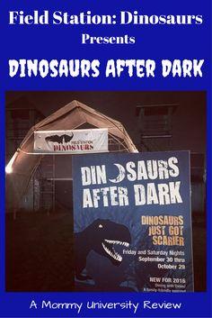 Dinosaurs after Dark at Field Station: Dinosaurs by Mommy University at www.MommyUniversityNJ.com