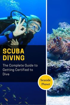How To Get Scuba Certified: The Complete Guide Scuba Diving Courses, Scuba Diving Equipment, Scuba Diving Gear, Cave Diving, Learn To Scuba Dive, Scuba Diving Certification, Beach Adventure, Beach Activities, Maui Vacation