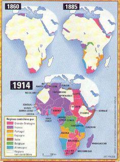La colonisation de l'Afrique s'inscrit dans une dynamique globale qui voit les sociétés agraires complexes violemment intégrées à un système capitaliste dominé par les puissances d'Europe de l'Ouest. Dans ce cadre général, il existe bien entendu des spécificités propres aux expériences historiques de colonisation de l'Afrique.