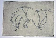 fruit bat, etching