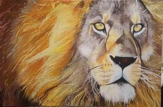 Original Oil Painting Fine Art, Lion, African Lion, Oil painting on canvas, Wildlife Art, Study of lion by SoulArtAlina on Etsy Hanging Paintings, Oil Paintings, Oil Painting On Canvas, Painting Art, Elephant Art, Wildlife Art, Friends In Love, Pet Portraits, How To Fall Asleep