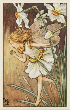 Flower Fairies of the Garden, The Narcissus Fairy   by mint_candy