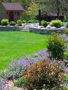 phlox and catmint are blooming ...tom and debbie ..spring 2016...