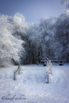 Winter in Nantahala National Forest, North Carolina