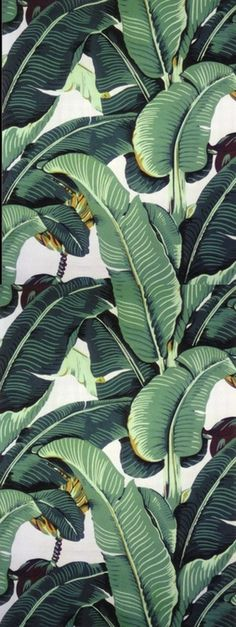 fulfilling all my lush tropical fantasies indoors // martinique wallpaper by beverly hills wallpaper