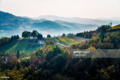 The Langhe country in autumn, Italy   Piedmont, Italy   #stockphotos #gettyimages #print #travel