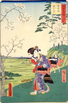 (『江戸自慢三十六興 飛鳥山投土器』歌川広重・歌川豊国 画)Cherry Blossom View,Hiroshige