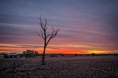 A sunset in the harsh but beautiful outback Queensland #sunset #australia #outback #abandoned