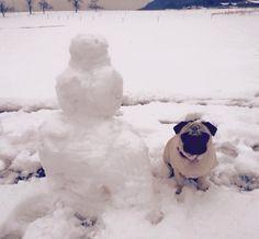 Winter ist nur doof !