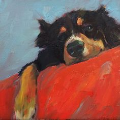 Fenway by susan hecht Oil ~ 12 x 12 Animal Paintings, Animal Drawings, Art Drawings, Illustration Art, Illustrations, Mundo Animal, Dog Portraits, Painting Inspiration, Painting & Drawing