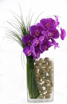 Fashion Avenue - Fuchsia phalaenopsis orchids sculpted in a tall rectangle glass vase with bear grass and white river rocks.
