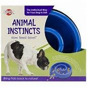 Spot Ethical Animal Instincts Slow Feed Bowls