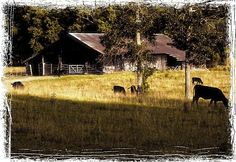 Dinner at the Cow Residence by Bob Hall