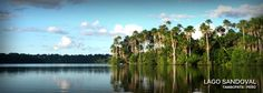 La Reserva Nacional de Tambopata. esta ubica al este y al sur de Puerto Maldonado. Se compone de 1,5 millones de hectáreas en las regiones de Madre de Dios y Puno.  La región de Tambopata - Candamo posee varios récords mundiales en flora y fauna de la región: 545 especies de aves, 1200 especies de mariposas, 151 especies de libélulas, y 29 especies de escarabajos tigre. Tambopata - Candamo puede ser visitada durante todo el año.
