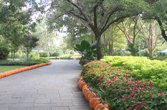 Autumn at the Arboretum, Pumpkin Village, The Dallas Arboretum, Garden, Fall, Dallas, Pumpkins