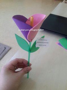 Evadan çiçek  ♡♡  #okuloncesi #sanatetkinligi #sanatmerkezi  #kindergarten #presschool #kidscraft #duskanyonublog