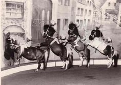 Historical photo of Berousek Circus (photo courtesy of www. Historical Photos, Vintage Images, Prague, Horses, Entertaining, Glass, Animals, Past, Historical Pictures