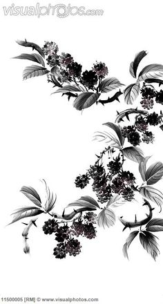 One of Riley's tattoos. Because the devil fell from heaven and landed in a blackberry bush.