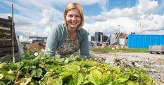 Nationen – distriktenes næringsavis - Guri Melby skal gjøre Oslo til en grønn landbruksby