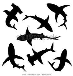 Find Shark Vector Silhouettes Set Sea Fish stock images in HD and millions of other royalty-free stock photos, illustrations and vectors in the Shutterstock collection. Thousands of new, high-quality pictures added every day. Shark Silhouette, Silhouette Painting, Silhouette Images, Animal Silhouette, Silhouette Vector, Hai Tattoos, Deco Surf, Under The Sea Decorations, Shark Art