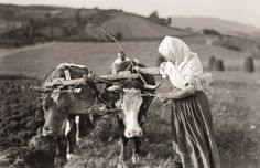 Oranie Heart Of Europe, Old Photography, Most Popular Instagram, Folk Dance, Eastern Europe, Clematis, Historical Photos, Old Photos, Horses