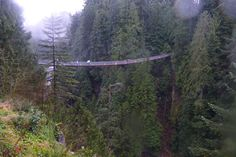 Capilano Suspension Bridge Park's Cliffwalk in  Vancouver, Canada (from Terrifying Platforms and Observation Decks: Slideshows Photo Gallery by 10Best.com)