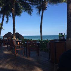 Ceviche & taco bar at secrets Capri resort in Riviera Maya