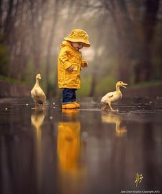 "HIS TWO LITTLE FAVORITE ""QUACKERS"" HOW THEY LOVE TO WADE IN THE PUDDLES AFTER A MORNING RAIN................ccp"