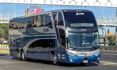 Express Bus, Bus System, New Bus, Marco Polo, Busses, Cars And Motorcycles, Mexico, Trucks, Coaches