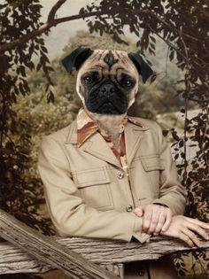 Seventies Pug