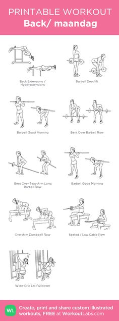 Back/ maandag : my visual workout created at WorkoutLabs. Gym Workouts, At Home Workouts, Forma Fitness, Bodybuilding, Fitness Motivation, Mental Training, Printable Workouts, Back And Biceps, Woman Workout