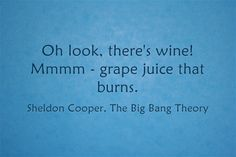 Sometimes, you need to brighten up a gloomy and gray Wednesday with a quick burst of levity from Sheldon Cooper: Salud! Order Wine Online, Grape Juice, Cheap Wine, Wine Delivery, Big Bang Theory, Bigbang, Burns, Wednesday, Nyc
