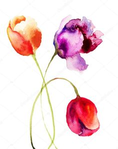 Image result for watercolor tulip