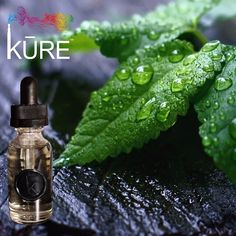 Looking for a refreshing ejuice flavor? Try our menthol Re-Fresh-MINT at any KURE Vaprorium & Lounge.