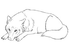 Sleeping Wolf, Sleeping Drawing, Furry Drawing, Love Drawings, Art Drawings Sketches, Animal Drawings, Fantasy Creatures, Mythical Creatures, Anime Drawing Books