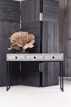 Contemporary furniture offset with large organic items as display