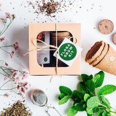 Plant Growing Kits by Flora Grow — Ethically So. Flower Factory, Gin Cocktail Recipes, Plant Labels, Kitchen Herbs, Grow Kit, Wildflower Seeds, Kits For Kids, Plant Design, Plant Decor