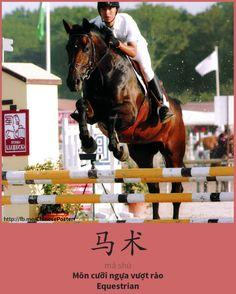 马术 - Mǎshù - - cưỡi ngựa vượt rào - equestrian