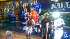 PHOTO: The Most Talked About Fan at Game One of the World Series is Not a Giants or Royals Fan | FatManWriting