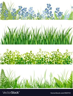 green grass floral banner collection over white background Stock Vector - 14043682 Watercolor Landscape, Landscape Art, Watercolor Art, Grass Drawing, Garden Fence Art, Old Paper Background, Floral Banners, Digital Painting Tutorials, Art Drawings Sketches