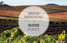 Winter marathons (and half marathons) in warm places. From vineyards to beaches, give yourself something to look forward to this February and March! Winter Running, Half Marathons, I Work Out, Stay Fit, Beaches, February, That Look, Health, Keep Fit