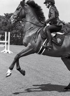 www.pegasebuzz.com | Jessica Springsteen by Bruce Weber for V Magazine, july 2015