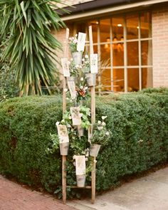 Escort cards were placed in pots also containing regional flowers and herbs at destination wedding in Italy