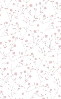 crème Illallah / vieux rose