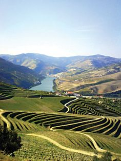 Douro Valley, Portugal   By/Por Gilberto Tadday/ Sábado