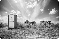 Thomas Subtil - Hakuna Matata - Safari Kenya 5