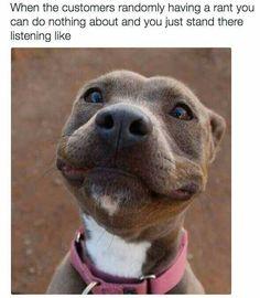 barkingtreedogsupply.com