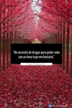 """""""No necesito de drogas para poder volar, con solo un beso tuyo me bastaría."""" #Callejero63 www.facebook.com/CarlosCajusol.H"""