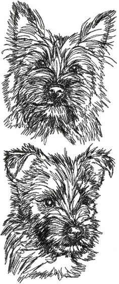 Advanced Embroidery Designs - Cairn Terrier Set